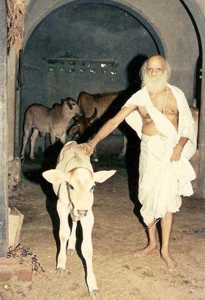 Sri Haridas Shastri Maharaja ji aus Vrindavan,
